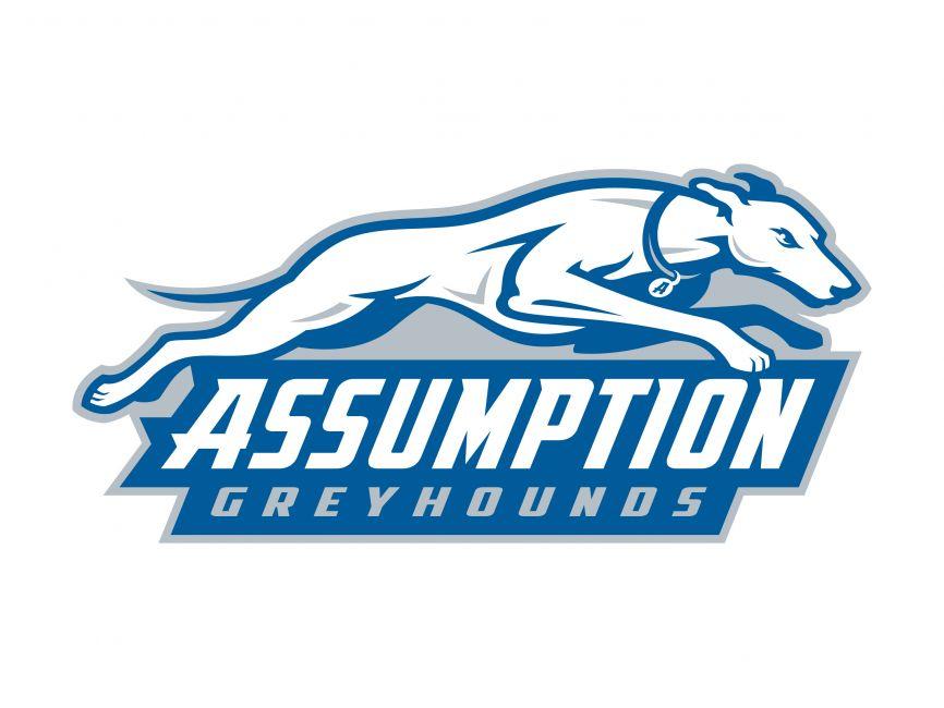 Assumption College Greyhounds