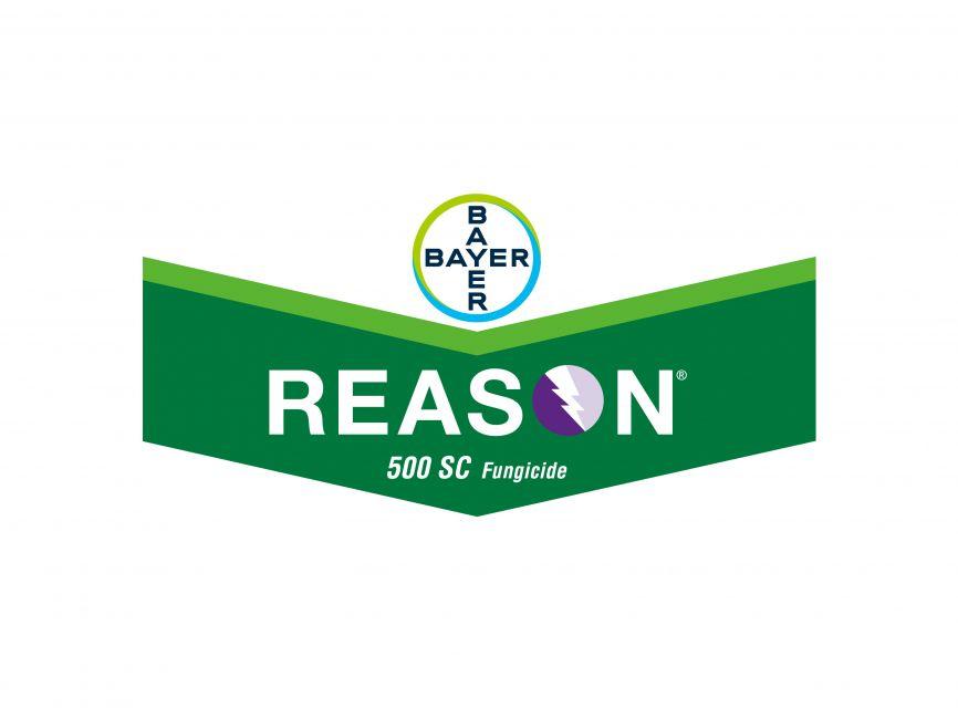Bayer Reason 500 SC Fungicide