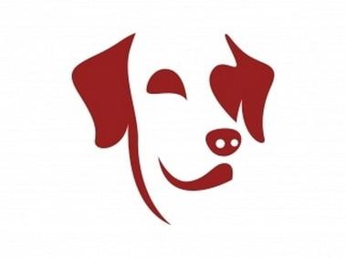 Labrador Dog Face