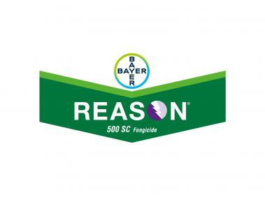 Bayer Reason 500 SC Fungicide
